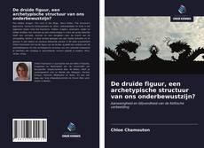 Buchcover von De druïde figuur, een archetypische structuur van ons onderbewustzijn?