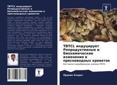 Borítókép a  TBTCL индуцирует Репродуктивные и биохимические изменения в пресноводных креветок - hoz