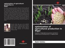Bookcover of optimization of agricultural production in Niger