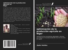 Обложка optimización de la producción agrícola en Níger