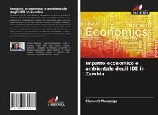 Copertina di Impatto economico e ambientale degli IDE in Zambia