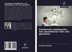 Bookcover of Emotionele intelligentie: een sleutelfactor met vele gezichten