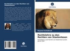Rechtslehre zu den Rechten von Staatenlosen kitap kapağı
