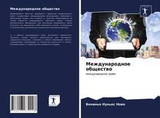 Bookcover of Международное общество