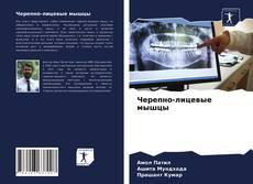 Bookcover of Черепно-лицевые мышцы