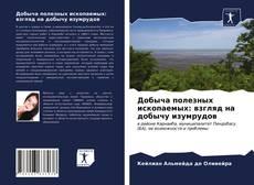 Borítókép a  Добыча полезных ископаемых: взгляд на добычу изумрудов - hoz