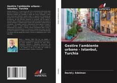 Portada del libro de Gestire l'ambiente urbano - Istanbul, Turchia
