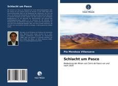 Schlacht um Pasco kitap kapağı
