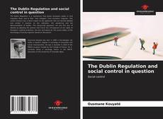 Copertina di The Dublin Regulation and social control in question