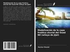 Portada del libro de Modelización de la capa freática aluvial del Oued Nil (wilaya de Jijel)