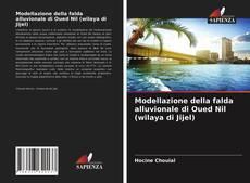 Bookcover of Modellazione della falda alluvionale di Oued Nil (wilaya di Jijel)