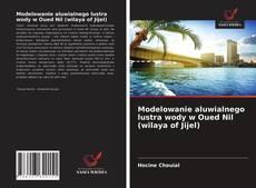 Bookcover of Modelowanie aluwialnego lustra wody w Oued Nil (wilaya of Jijel)
