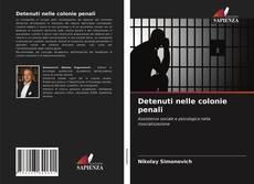 Couverture de Detenuti nelle colonie penali