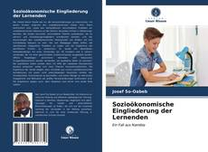 Copertina di Sozioökonomische Eingliederung der Lernenden