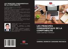 Couverture de LES PRINCIPES FONDAMENTAUX DE LA COMPTABILITÉ
