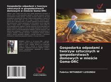 Bookcover of Gospodarka odpadami z tworzyw sztucznych w gospodarstwach domowych w mieście Goma-DRC