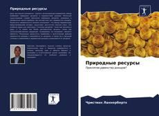 Природные ресурсы kitap kapağı