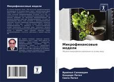 Buchcover von Микрофинансовые модели