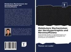 Bookcover of Molekulare Mechanismen der Herzhypertrophie und Herzinsuffizienz
