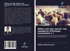 Effect van het voeren van weegbree (Plantago Lanceolata L.)的封面