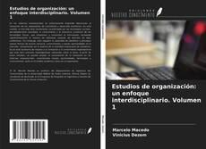 Bookcover of Estudios de organización: un enfoque interdisciplinario. Volumen 1
