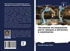 Portada del libro de Численное исследование роста трещин в металлах и композитах