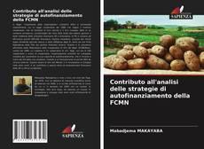 Borítókép a  Contributo all'analisi delle strategie di autofinanziamento della FCMN - hoz