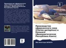 Производство африканского сома (Clarias gariepinus) в Киншасе (Демократическая Республика Конго)的封面