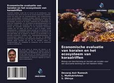 Обложка Economische evaluatie van koralen en het ecosysteem van koraalriffen