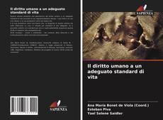 Capa do livro de Il diritto umano a un adeguato standard di vita