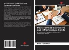 Development institutions and infrastructure bonds kitap kapağı