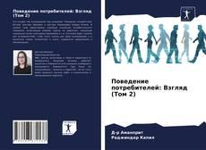 Bookcover of Поведение потребителей: Взгляд (Том 2)