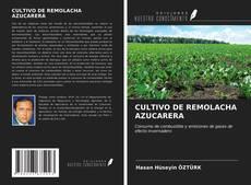 Portada del libro de CULTIVO DE REMOLACHA AZUCARERA