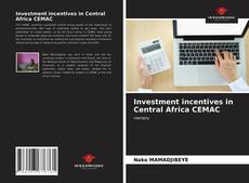 Bookcover of Investment incentives in Central Africa CEMAC