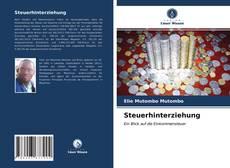 Bookcover of Steuerhinterziehung