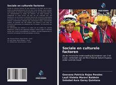 Bookcover of Sociale en culturele factoren