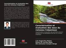 Buchcover von Caractérisation et évaluation des eaux du ruisseau Colpamayo