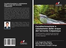 Buchcover von Caratterizzazione e valutazione delle acque del torrente Colpamayo