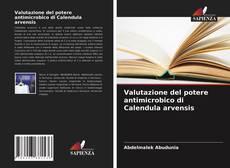Bookcover of Valutazione del potere antimicrobico di Calendula arvensis