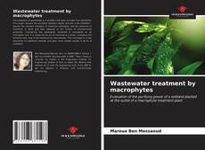 Wastewater treatment by macrophytes的封面