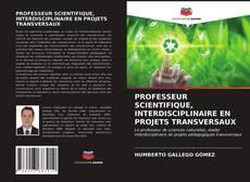 PROFESSEUR SCIENTIFIQUE, INTERDISCIPLINAIRE EN PROJETS TRANSVERSAUX的封面