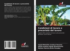 Bookcover of Condizioni di lavoro e precarietà del lavoro