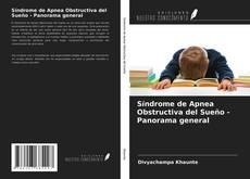 Copertina di Síndrome de Apnea Obstructiva del Sueño - Panorama general