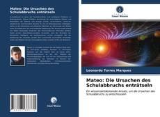 Buchcover von Mateo: Die Ursachen des Schulabbruchs entr?tseln