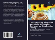 Bookcover of Uitdagingen op het gebied van productie en afzet: Een focus op de subsector Honing