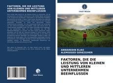 Buchcover von FAKTOREN, DIE DIE LEISTUNG VON KLEINEN UND MITTLEREN UNTERNEHMEN BEEINFLUSSEN