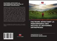 Couverture de FACTEURS AFFECTANT LA PERFORMANCE DES PETITES ET MOYENNES ENTREPRISES