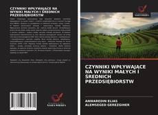 Buchcover von CZYNNIKI WPŁYWAJĄCE NA WYNIKI MAŁYCH I ŚREDNICH PRZEDSIĘBIORSTW