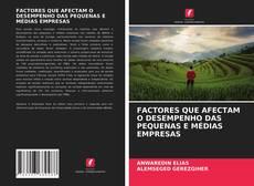 Buchcover von FACTORES QUE AFECTAM O DESEMPENHO DAS PEQUENAS E MÉDIAS EMPRESAS