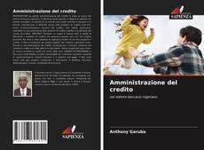Amministrazione del credito kitap kapağı